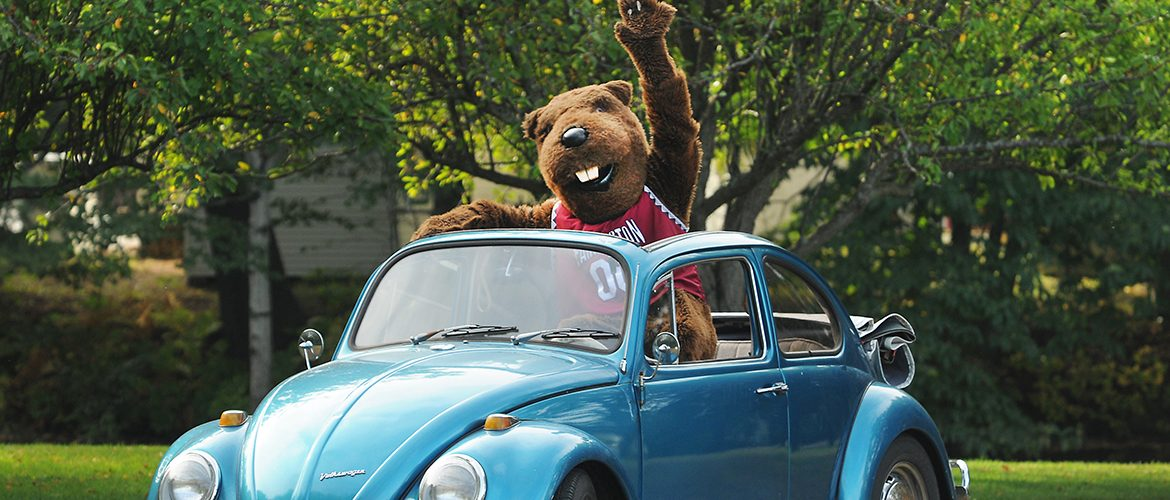 Beaver mascot waving in a blue Volkswagen Beetle car