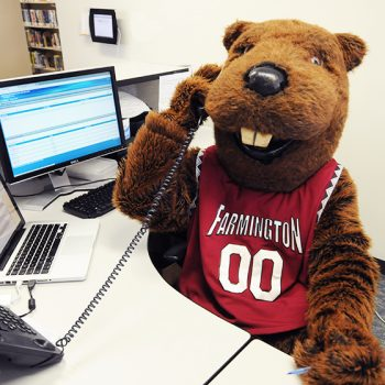 Image of the UMF mascot, Chompers the beaver, answering the phone