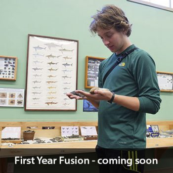 First Year Fusion-coming soon