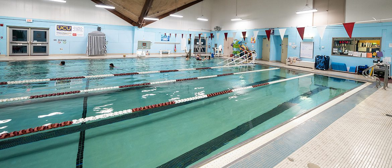 Indoor swimming pool scene