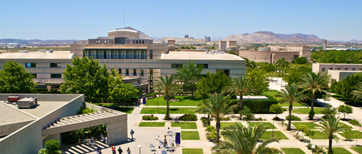Economics and Business campus building with vibrant patches of grass and palm trees.