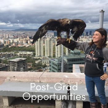UMF student with an eagle perched on her arm with a city backdrop behind her.