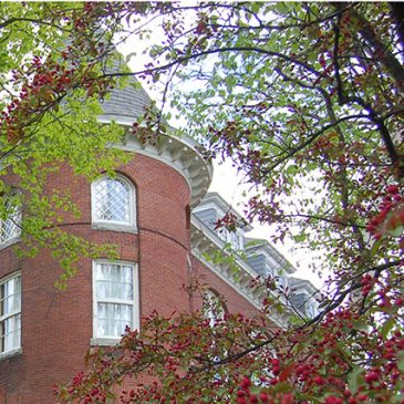 Closeup of UMF Merrill Hall architecture with cherry blossoms