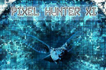 Pixel Hunter XI poster