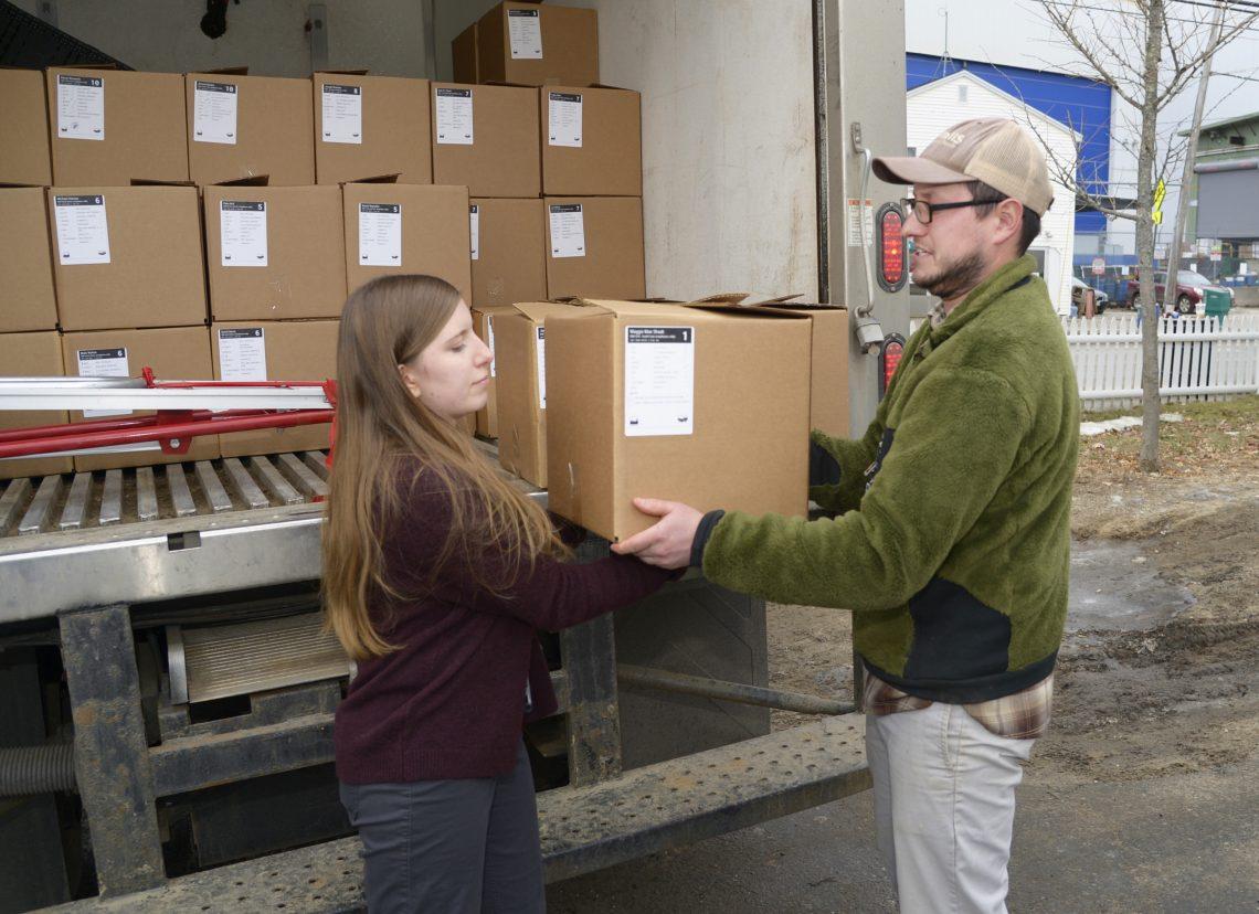 UMF intern Kendra Burgess helps Eric Ferguson, Harvest Tide Organics farmer, unload bi-weekly farm shares of locally grown vegetables for BIW employees.